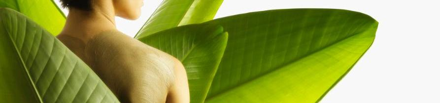 Shiatsu Erfurt, Massage, Therapie und Fußreflexzone